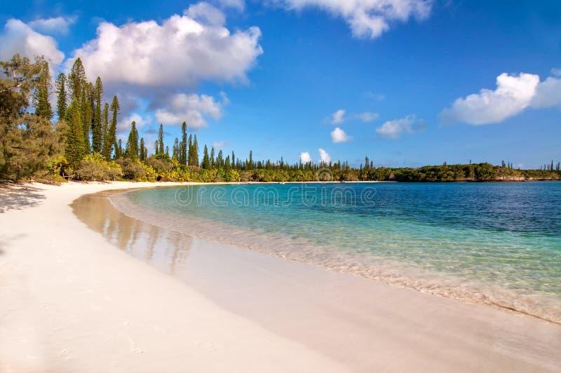 Tropical beach, Isle of Pines. New Caledonia royalty free stock photo