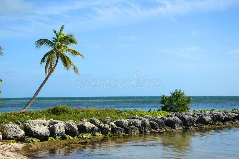 Tropical Beach, Key West Royalty Free Stock Photos