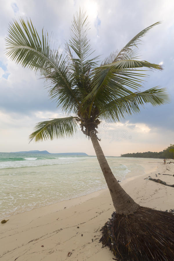 Tropical beach in Ko Rong with sea wave on the sand and palm trees stock photos