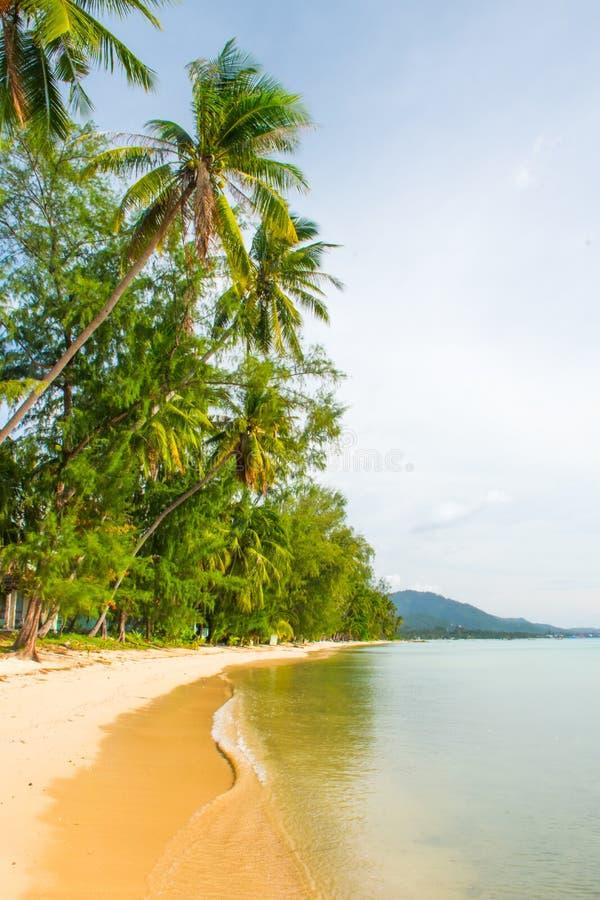 Tropical beach Laem Yai with palms, Koh Samui Island, Thailand. Tropical beach Laem Yai with palms in the Koh Samui Island in Thailand royalty free stock photo
