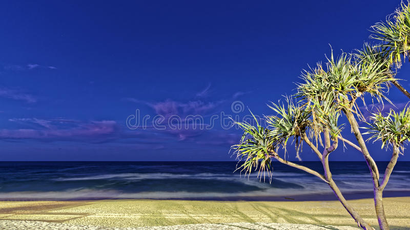 Tropical beach landscape lighted at night. Long exposure image of a tropical beach lighted by night in Surfers Paradise, Gold Coast, Australia royalty free stock photos