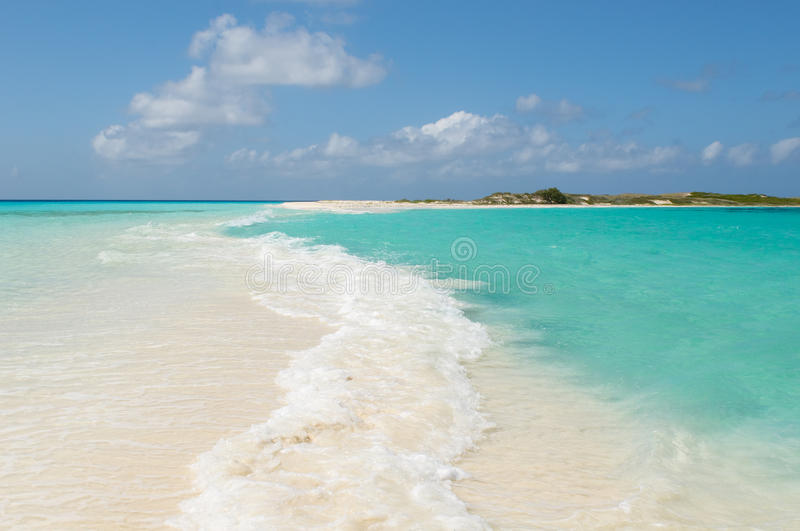 Tropical beach, los roques islands, venezuela royalty free stock photos