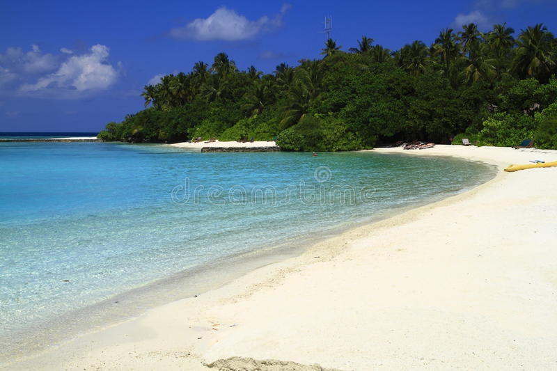 Download Tropical beach stock image. Image of blue, coast, maldives - 32898965