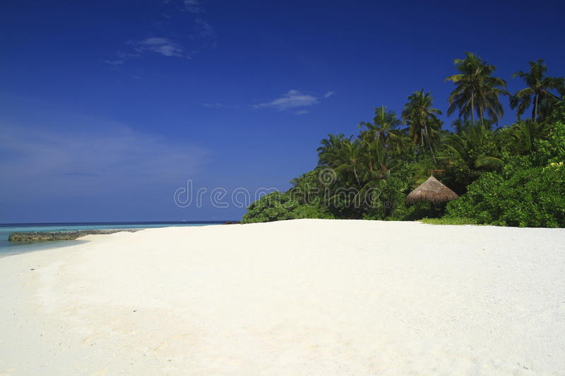 Download Tropical beach stock photo. Image of dhoni, oasis, beautiful - 32900246