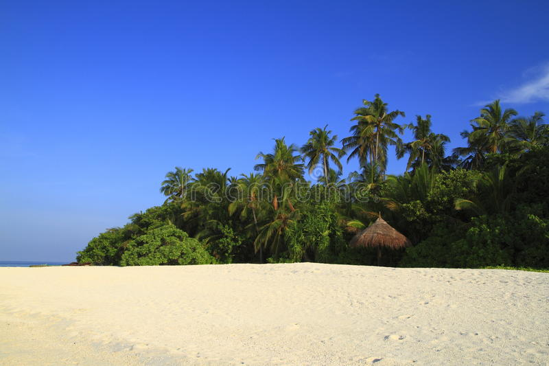 Download Tropical beach stock image. Image of quiet, exotic, indian - 32900745