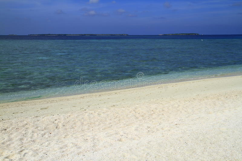 Download Tropical beach stock image. Image of coast, jetty, atoll - 32901909