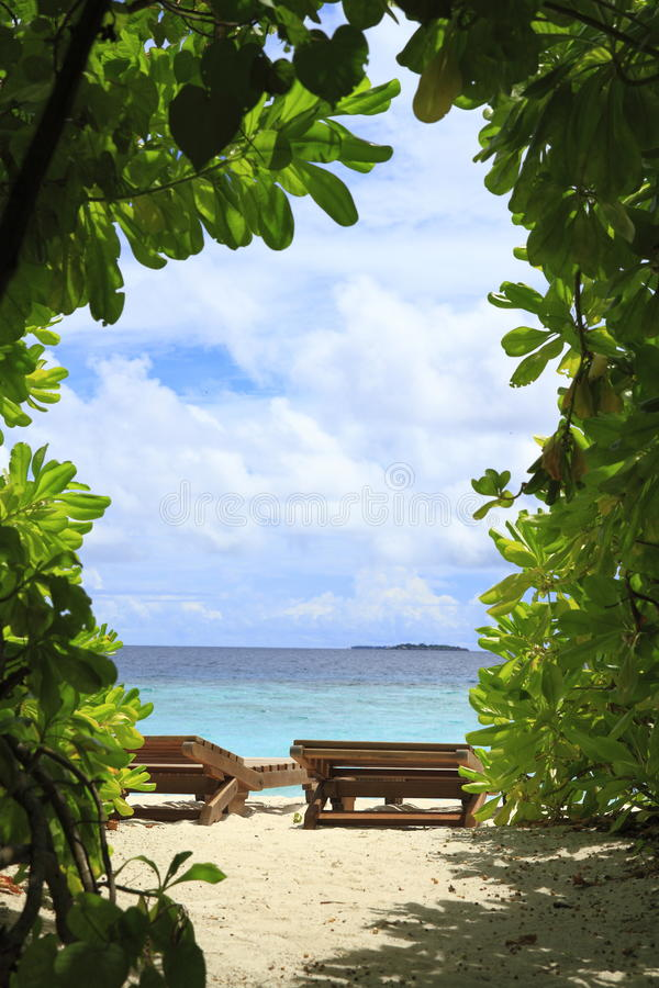 Download Tropical beach stock image. Image of caribbean, indian - 32904623