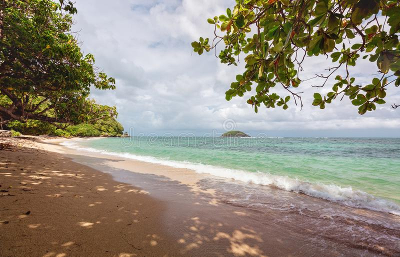 A tropical beach in Martinique Island, French West Indies - Wild Caribbean beach.  royalty free stock images