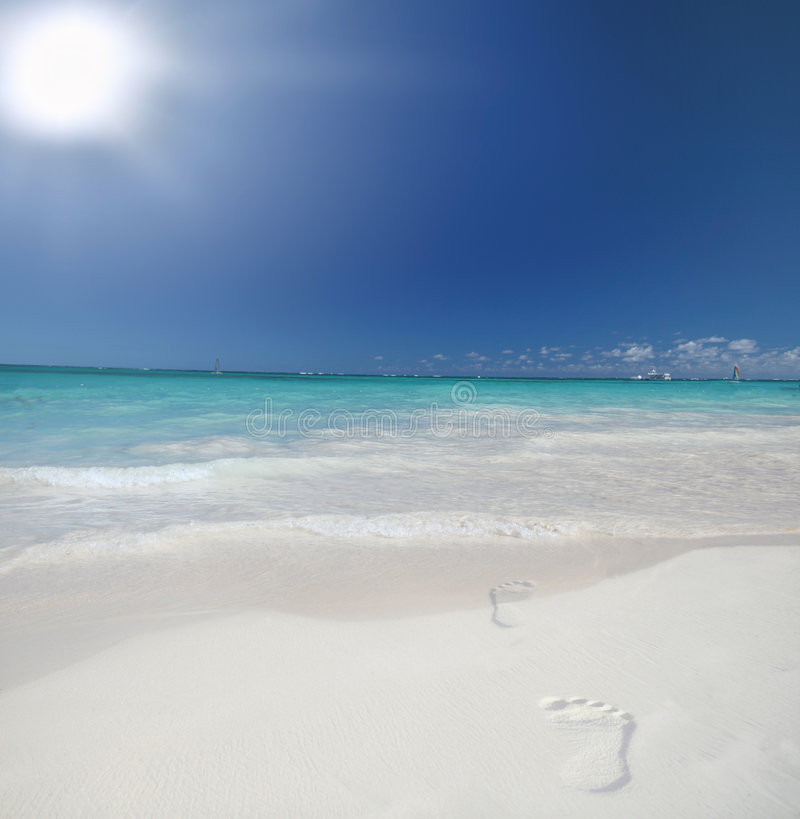 Tropical Beach And Peaceful Ocean: White Sand Beach And Ocean Background Stock Image