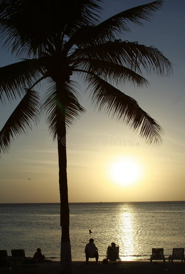 Download Tropical Beach And Palm Tree Stock Photo - Image: 1279980