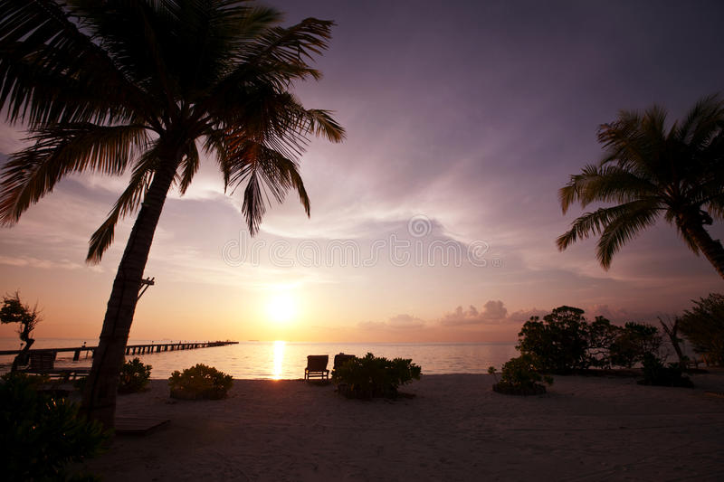 Download Tropical Beach Royalty Free Stock Photo - Image: 32026725