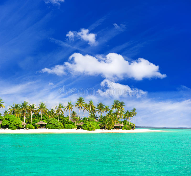 Download Tropical  Beach With Palm Trees Stock Images - Image: 22903454