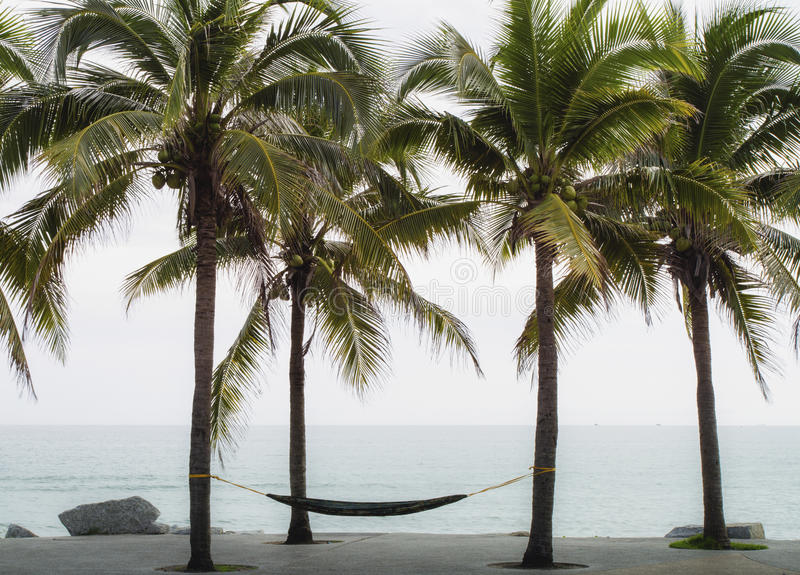 Download Tropical Beach With Palm Trees Stock Image - Image: 35767583