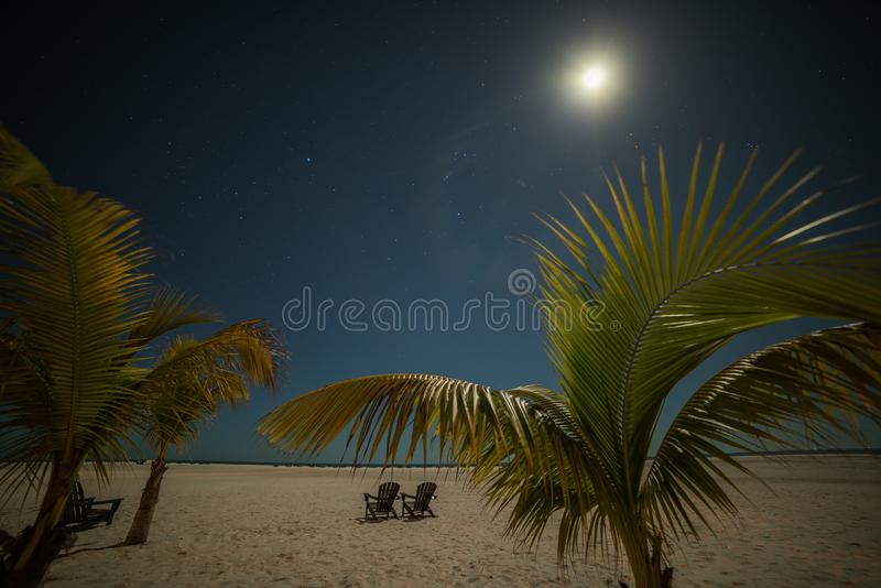 Tropical beach with palm trees at night. two shelongas under a starry sky and a radiant moon. USA. Florida. Sanibel. stock photo