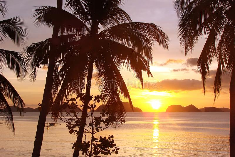 Tropical beach with palm trees at sunset, El Nido, Palawan island, the Philippines royalty free stock images