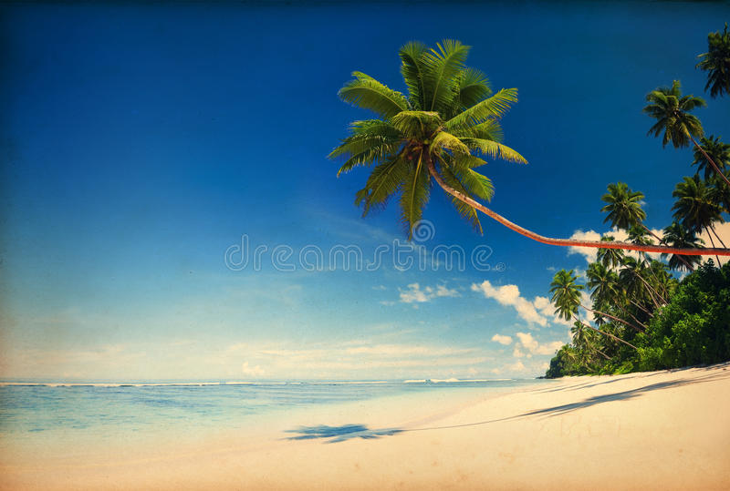 Tropical Beach Paradise with Vintage Effect.  royalty free stock photo