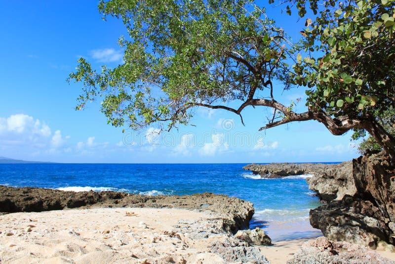 Tropical beach Playa Blanca in Baracoa, Cuba royalty free stock photo