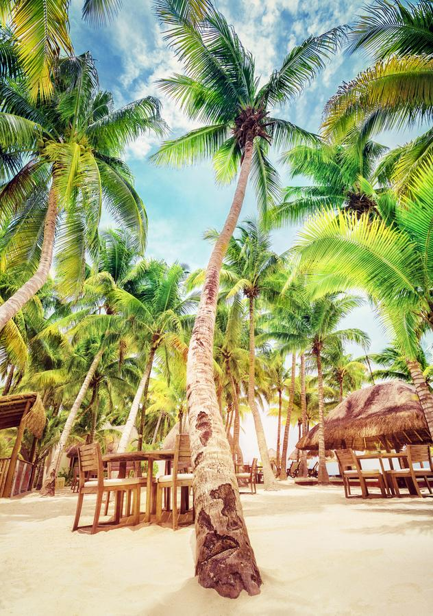 Tropical beach resort stock photos