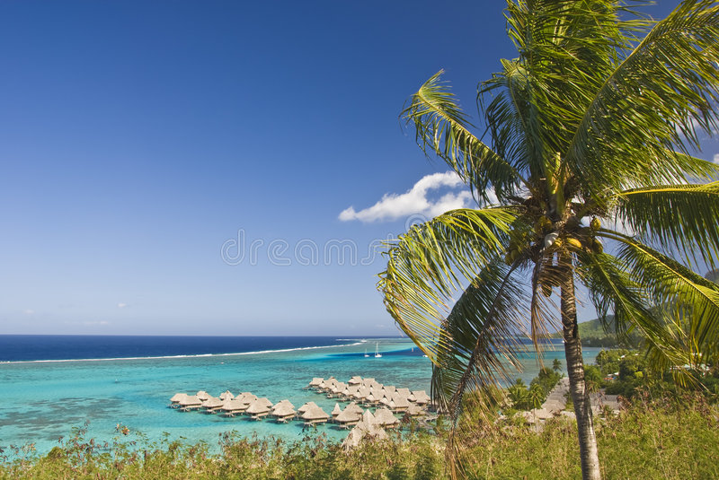 Tropical beach resort on moorea in south seas royalty free stock image