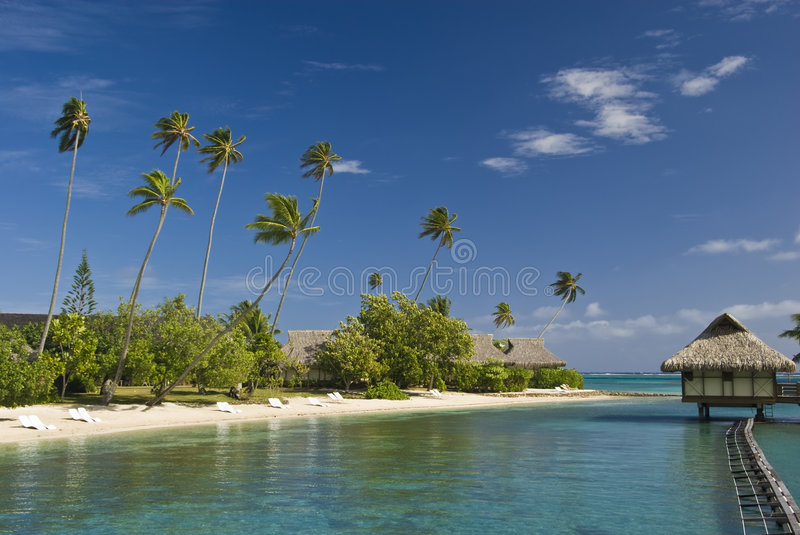 Download Tropical Beach Resort On Moorea In South Seas Stock Image - Image: 4790731