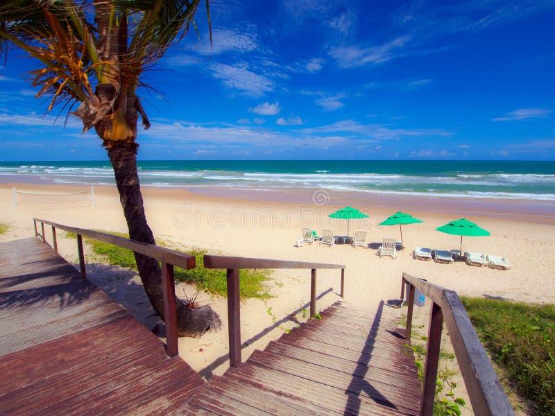 Tropical Beach Resort stock images