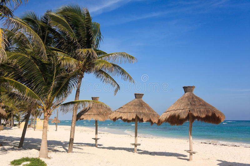 Tropical beach in the Riviera Maya. Huts and palm trees on a beach in the Riviera Maya in Mexico stock images