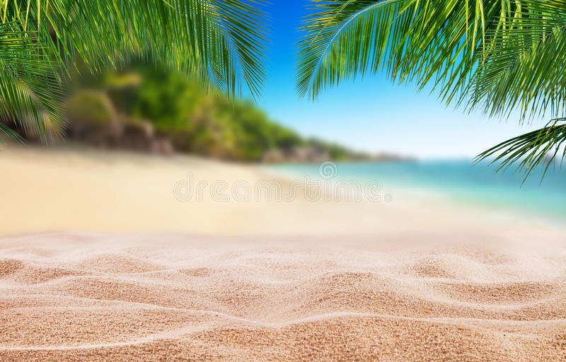 Tropical beach with sand, summer holiday background. royalty free stock image