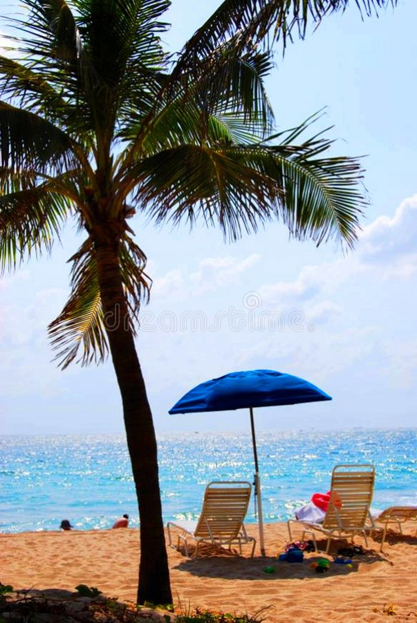 Tropical Beach Scene royalty free stock photo