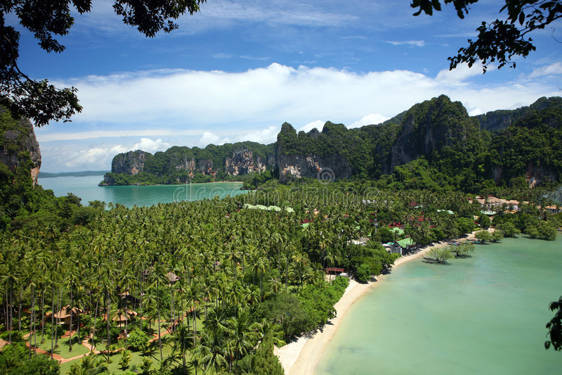 Download Tropical beach scene stock photo. Image of tree, swimming - 6489472