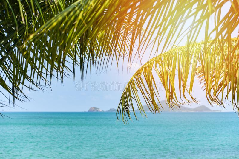 Tropical beach sea with coconut palm tree sunlight ocean on the summer blue sky and islands / Vacation holidays background stock photography
