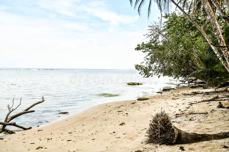 Tropical beach and sea, in costa rica central america. Tropical beach and sea, photo as a background, digital image stock photography