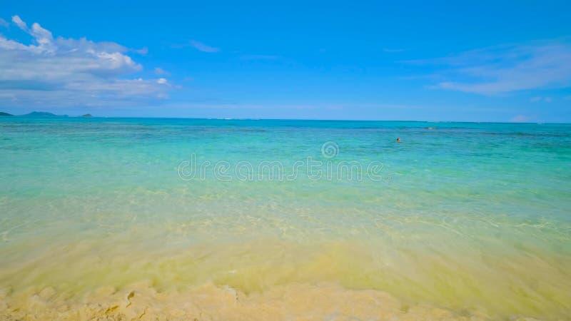 Tropical beach and sea /hawaii 2019 royalty free stock image