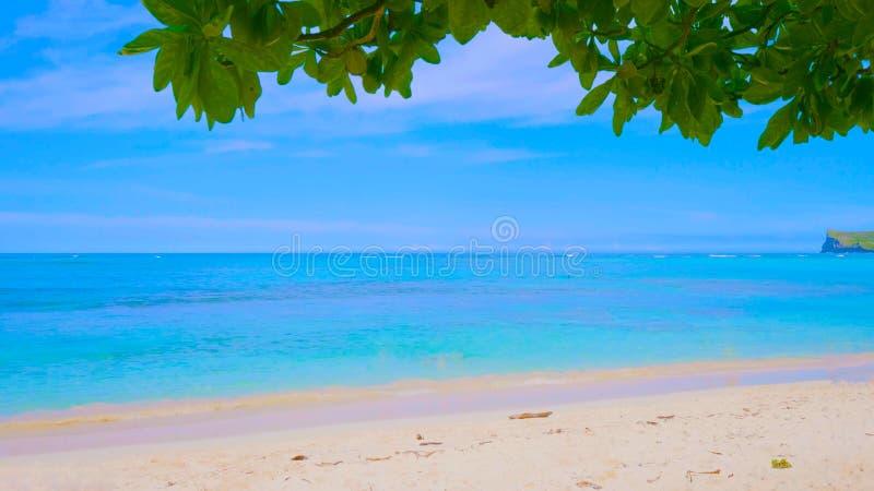 Tropical beach and sea in hawaii 2019 royalty free stock photos