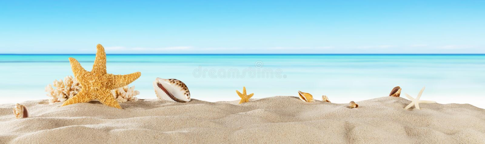 Tropical beach with sea star on sand, summer holiday background. Travel and beach vacation