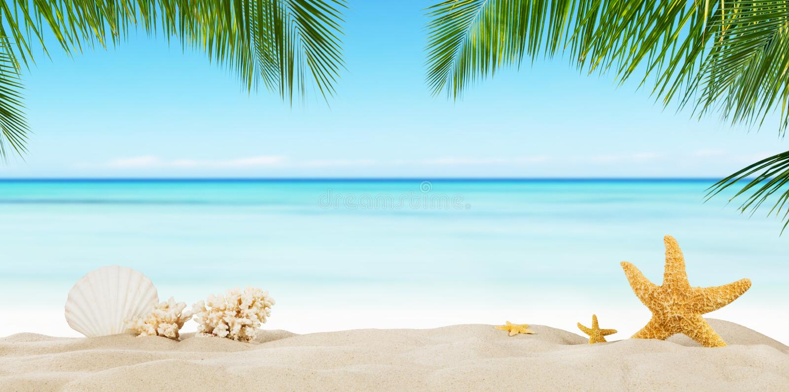 Tropical beach with sea star on sand, summer holiday background. stock image