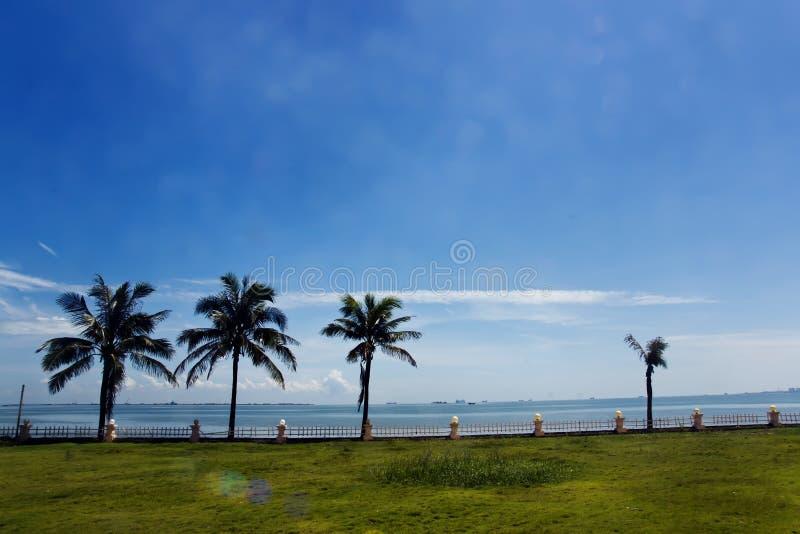 Tropical Beach, Seaside Royalty Free Stock Photo