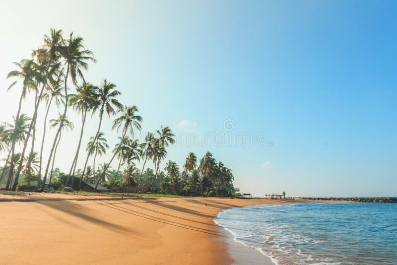 Tropical beach on a sunny day stock photography