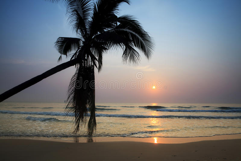 Tropical Beach At Sunrise Stock Photo