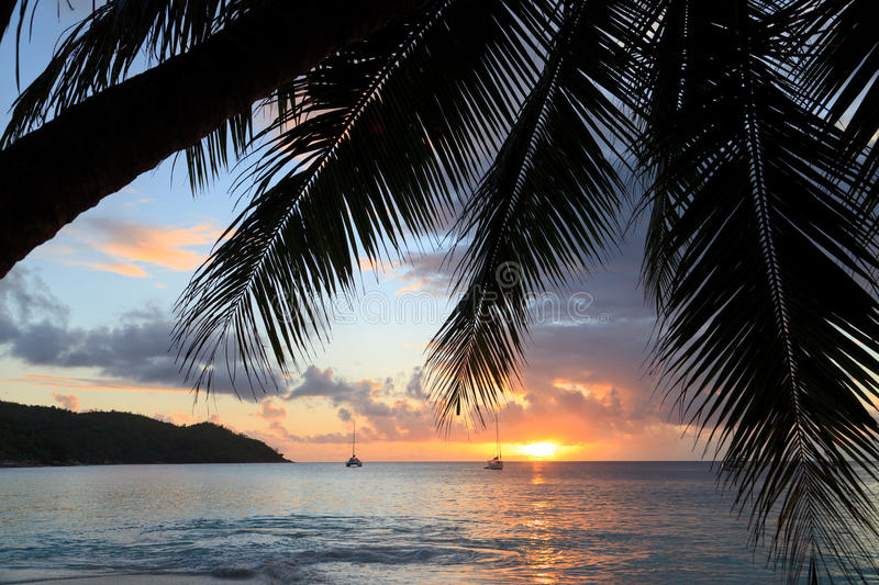 Tropical Beach At Sunset Stock Images