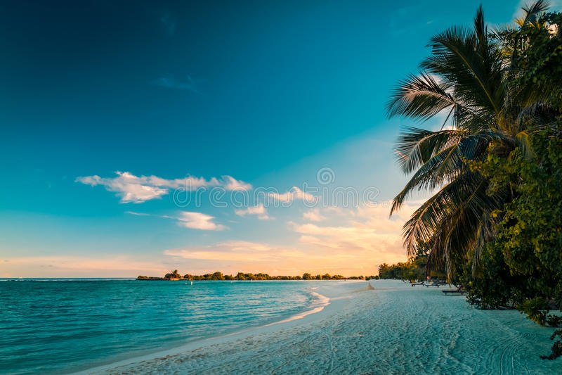 Tropical beach sunset. Crystal clear water and luxury water bungalows. Tropical tranquil background concept royalty free stock image