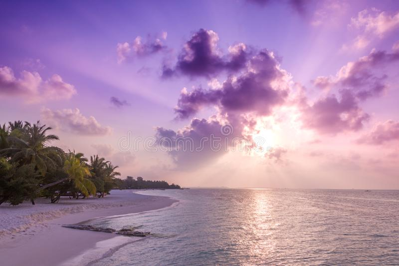 Relaxing and calm sea view and beach scene. Open ocean water and sunset sky and palm trees. Tranquil nature background. Tropical beach sunset landscape. Calm sea royalty free stock photography