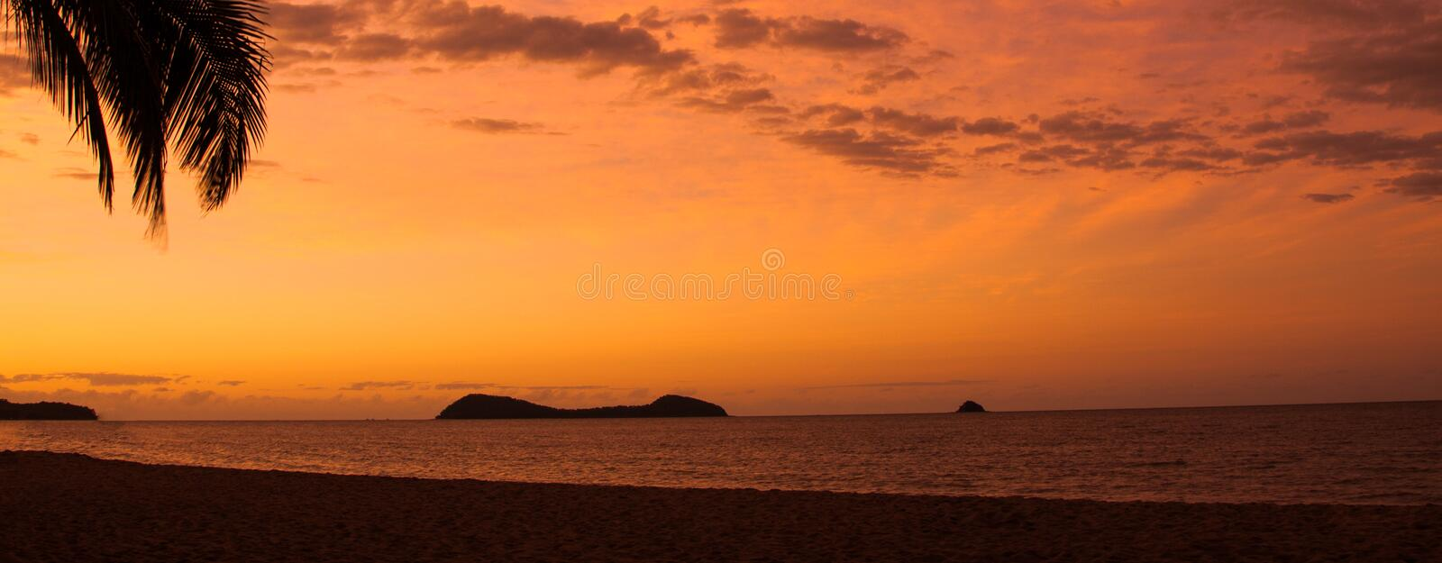 Download Tropical beach sunset stock photo. Image of australia - 31090430