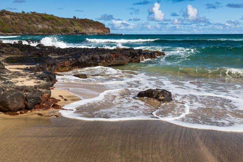 Download Tropical Beach And Surf Kauai Hawaii Stock Image - Image of trees, torism: 32032787