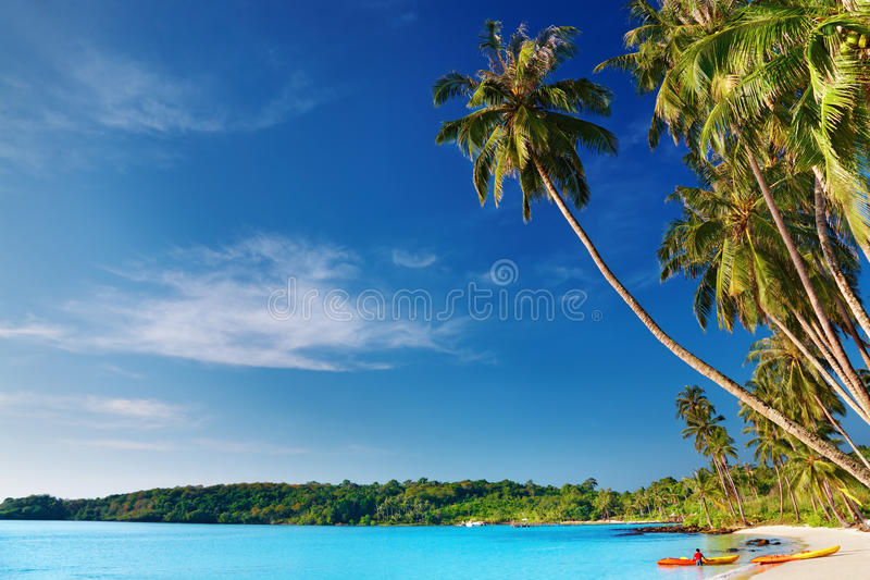 Download Tropical Beach, Thailand Stock Photography - Image: 12459062