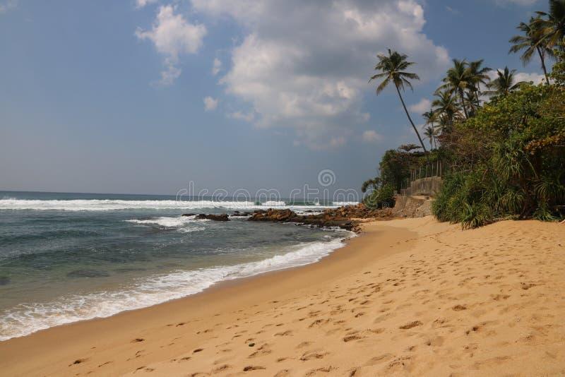 Tropical beach translucent sea , Sri Lanka. Sri Lanka`s Hill Country wild side beach and palm translucent water royalty free stock image