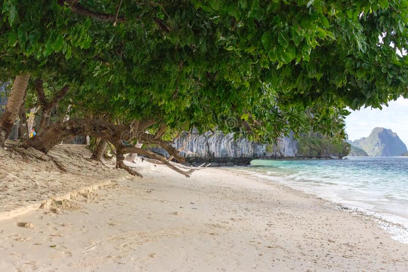 Tropical beach with trees and white sand. Seascape with isles on background. Vacation and relax background. Tropic paradise. stock photos