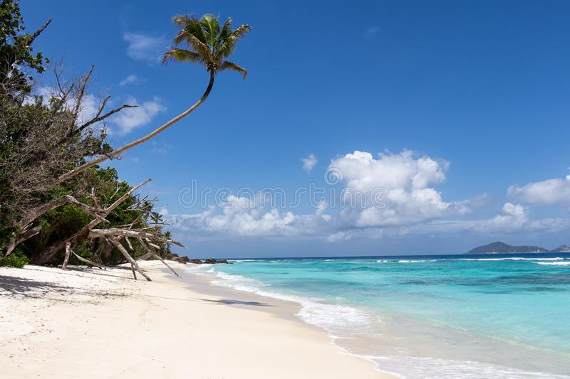 Tropical beach on Silhouette island, Seychelles royalty free stock image