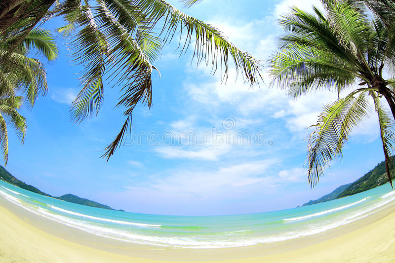 Download Tropical Beach Wide Angle Panorama Stock Photo - Image: 26531916