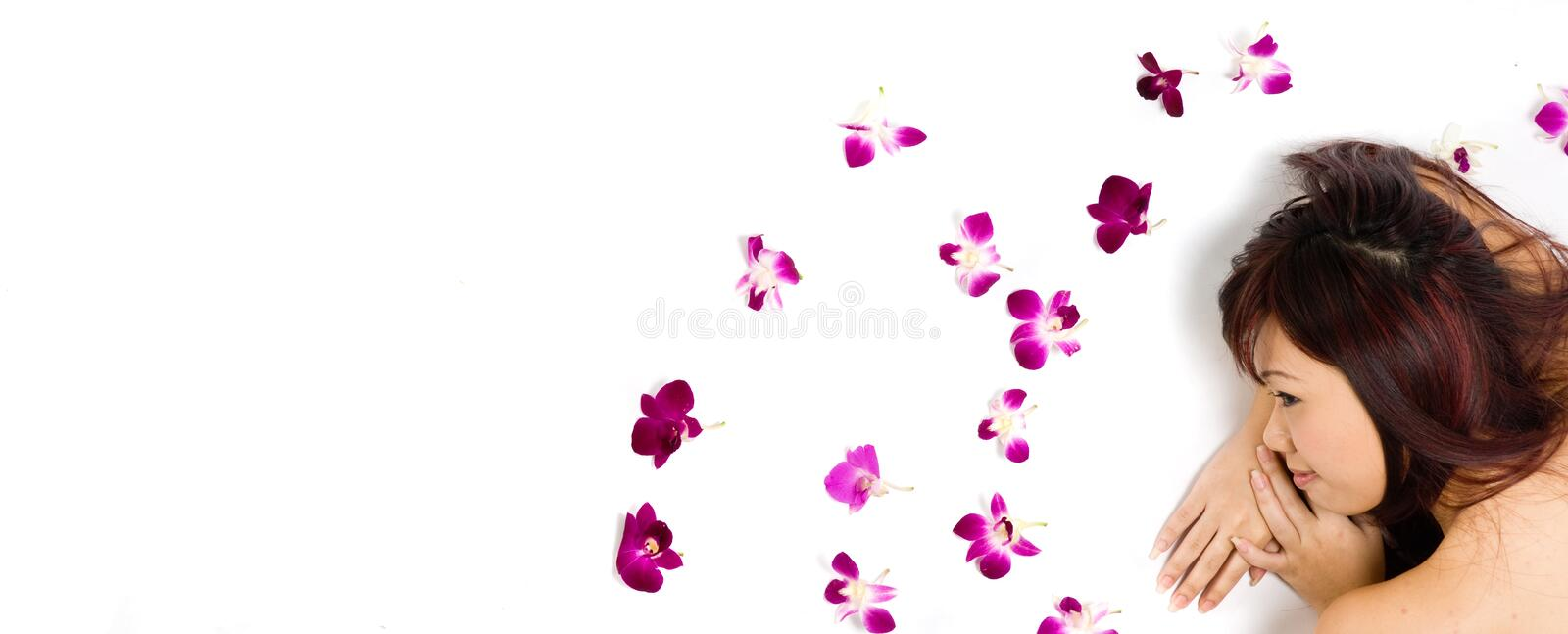 Download Tropical Beauty stock photo. Image of natural, flowers - 3200090