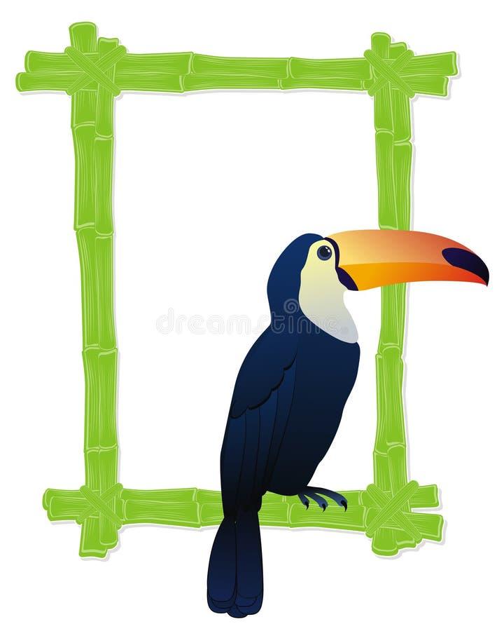 Tropical Bird Frame Stock Photos